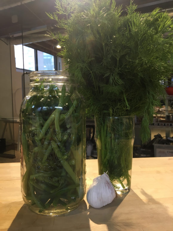Beans and herbs, ready for pickling
